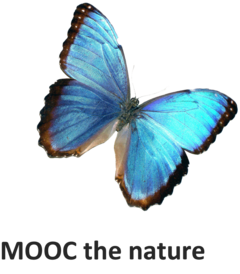 MOOC the nature.png